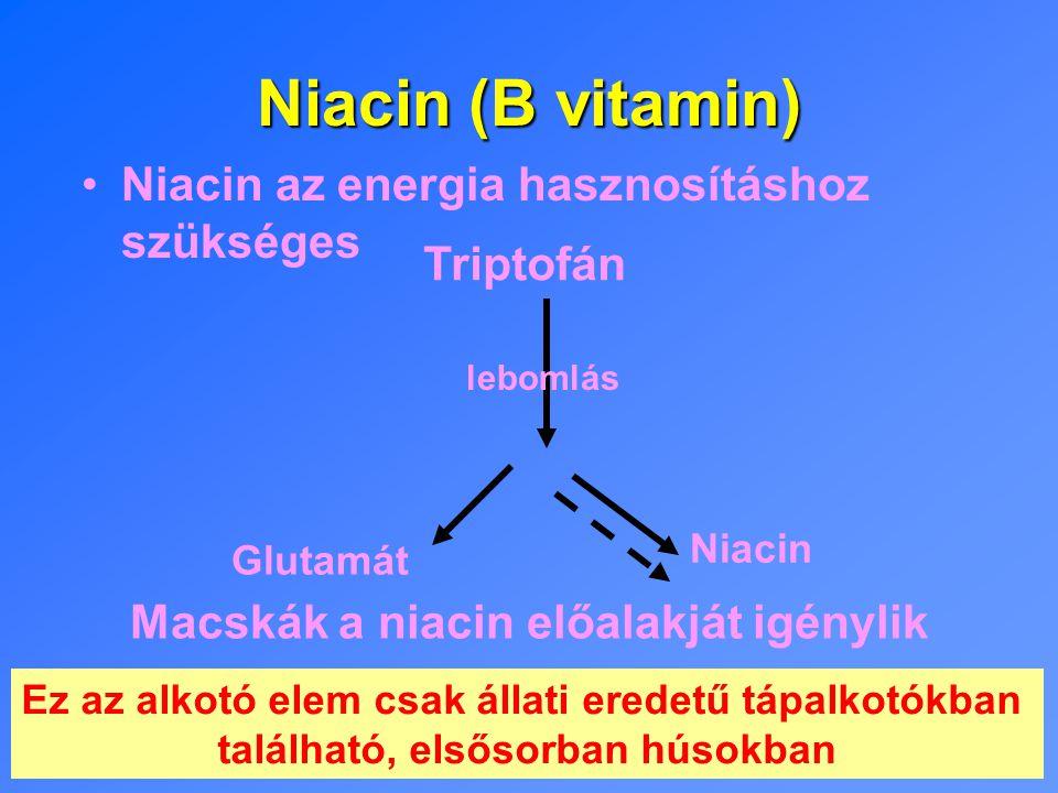 Niacin (B vitamin) Niacin az energia hasznosításhoz szükséges Macskák a niacin előalakját igénylik Ez az alkotó elem csak állati eredetű tápalkotókban található, elsősorban húsokban Glutamát Niacin Triptofán lebomlás