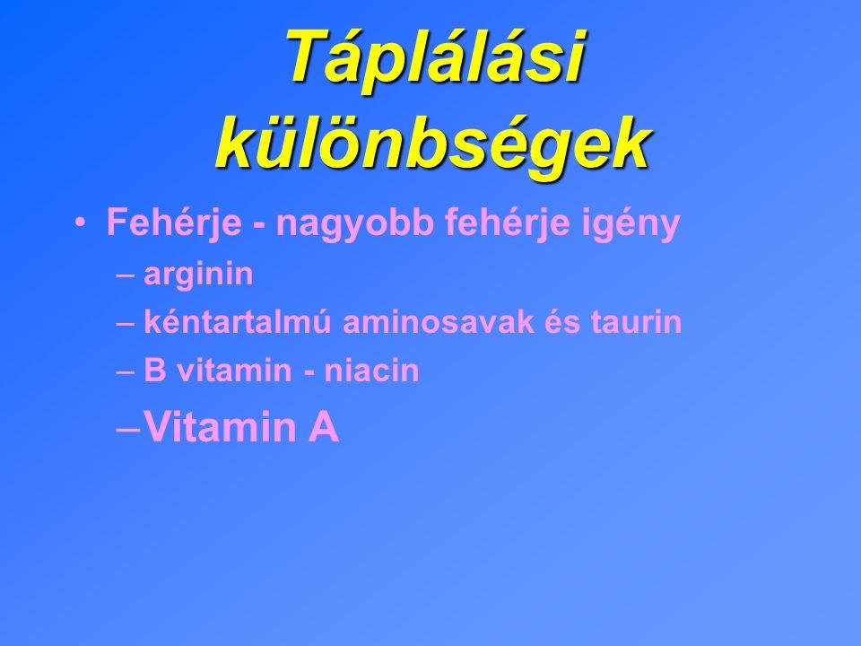 Táplálási különbségek Fehérje - nagyobb fehérje igény –arginin –kéntartalmú aminosavak és taurin –B vitamin - niacin –Vitamin A