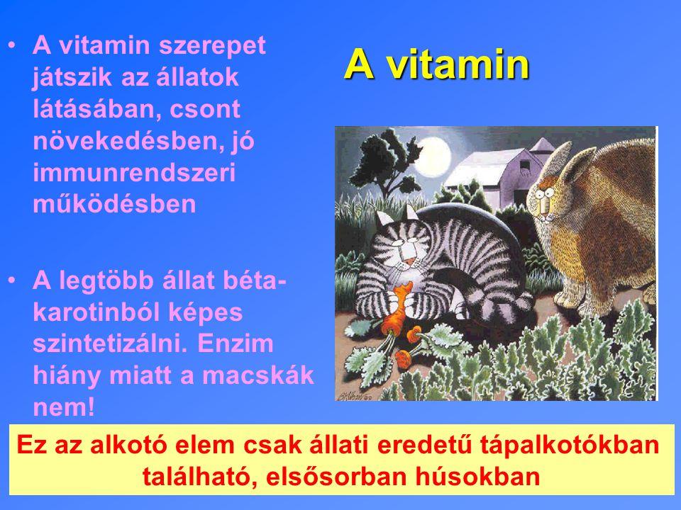 A vitamin A vitamin szerepet játszik az állatok látásában, csont növekedésben, jó immunrendszeri működésben A legtöbb állat béta- karotinból képes szintetizálni.