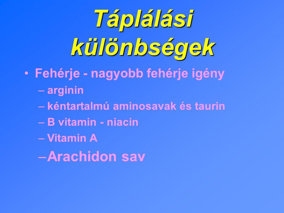 Táplálási különbségek Fehérje - nagyobb fehérje igény –arginin –kéntartalmú aminosavak és taurin –B vitamin - niacin –Vitamin A –Arachidon sav