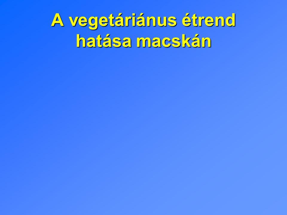 A vegetáriánus étrend hatása macskán