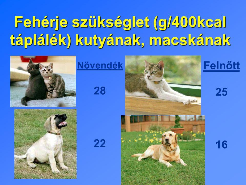 Fehérje szükséglet (g/400kcal táplálék) kutyának, macskának Növendék 28 22 Felnőtt 25 16