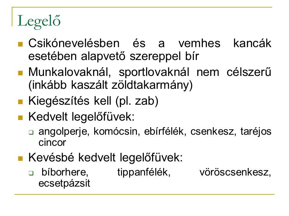 Legelő Csikónevelésben és a vemhes kancák esetében alapvető szereppel bír Munkalovaknál, sportlovaknál nem célszerű (inkább kaszált zöldtakarmány) Kiegészítés kell (pl.