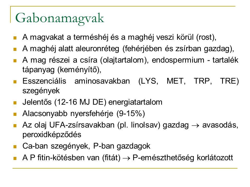 Gabonamagvak A magvakat a terméshéj és a maghéj veszi körül (rost), A maghéj alatt aleuronréteg (fehérjében és zsírban gazdag), A mag részei a csíra (olajtartalom), endospermium - tartalék tápanyag (keményítő), Esszenciális aminosavakban (LYS, MET, TRP, TRE) szegények Jelentős (12-16 MJ DE) energiatartalom Alacsonyabb nyersfehérje (9-15%) Az olaj UFA-zsírsavakban (pl.