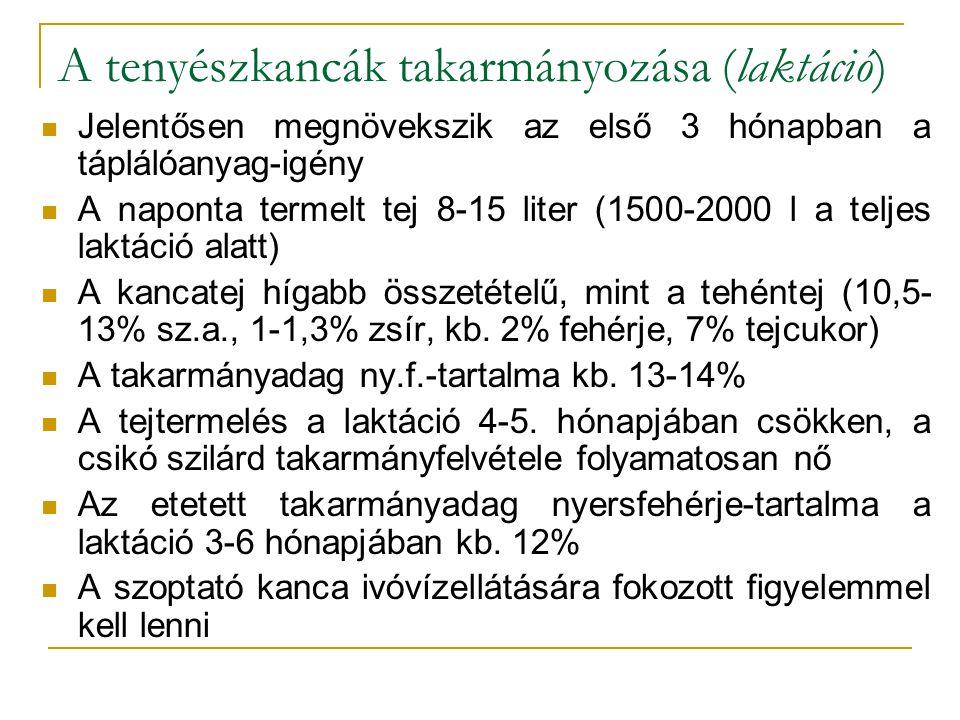 A szopós csikó takarmányozása Föcstej (immunglobulinok) Az első hetekben minél többször, és gyakrabban jusson kolosztrumhoz az állat Szilárd takarmány felvétel a második héten Zab+cukor (először), később ad libitum zab és jó minőségű széna (lucerna és/vagy réti széna) Választás kb.
