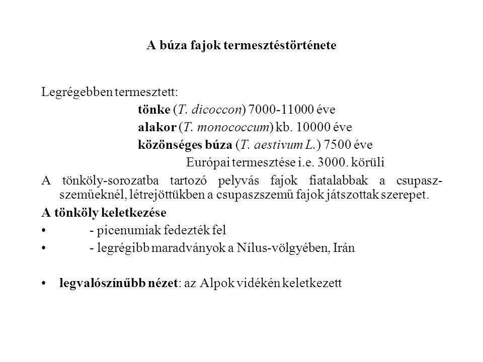 A búza fajok termesztéstörténete Legrégebben termesztett: tönke (T. dicoccon) 7000-11000 éve alakor (T. monococcum) kb. 10000 éve közönséges búza (T.