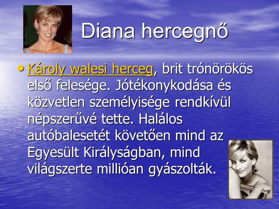 Diana hercegnő Diana hercegnő Károly walesi herceg, brit trónörökös első felesége.