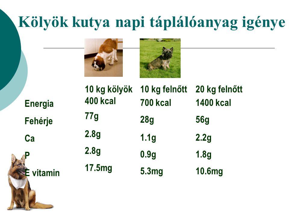 Kölyök kutya napi táplálóanyag igénye Energia Fehérje Ca P E vitamin 10 kg kölyök 400 kcal 77g 2.8g 17.5mg 10 kg felnőtt 700 kcal 28g 1.1g 0.9g 5.3mg 20 kg felnőtt 1400 kcal 56g 2.2g 1.8g 10.6mg