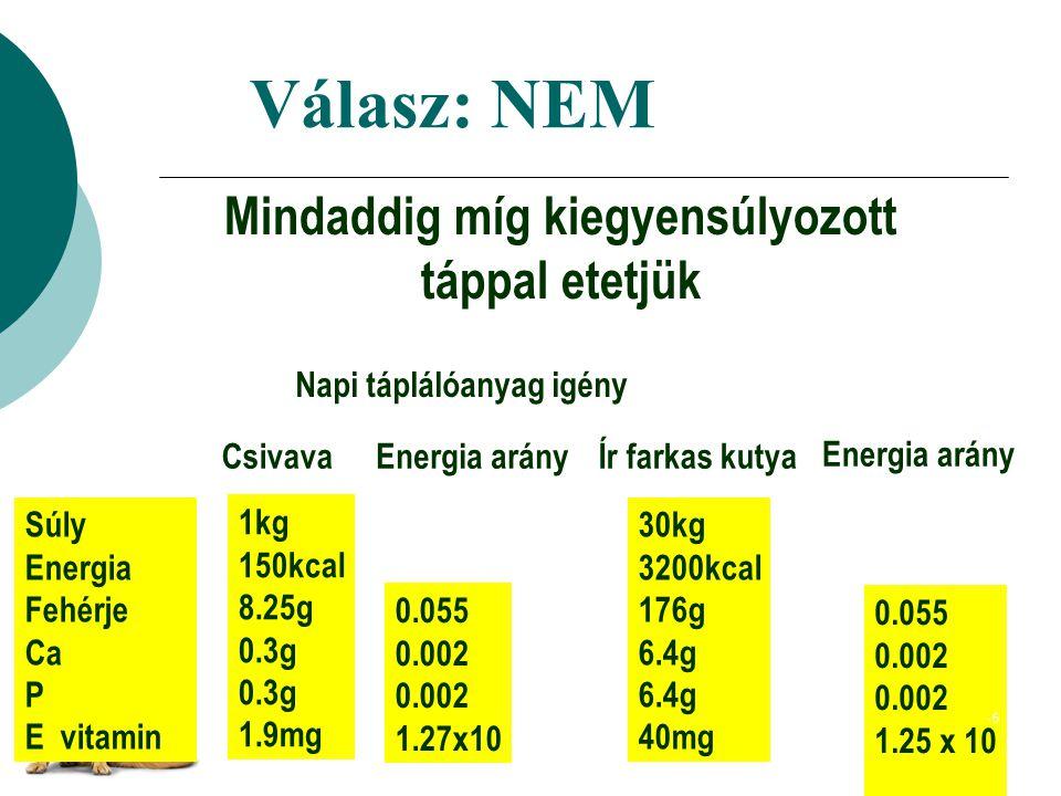 Válasz: NEM Mindaddig míg kiegyensúlyozott táppal etetjük Napi táplálóanyag igény CsivavaÍr farkas kutyaEnergia arány -5 Súly Energia Fehérje Ca P E vitamin 1kg 150kcal 8.25g 0.3g 1.9mg 30kg 3200kcal 176g 6.4g 40mg 0.055 0.002 1.27x10 0.055 0.002 1.25 x 10 -5