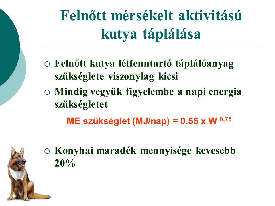 Felnőtt mérsékelt aktivitású kutya táplálása  Felnőtt kutya létfenntartó táplálóanyag szükséglete viszonylag kicsi  Mindig vegyük figyelembe a napi energia szükségletet  Konyhai maradék mennyisége kevesebb 20% ME szükséglet (MJ/nap) = 0.55 x W 0,75