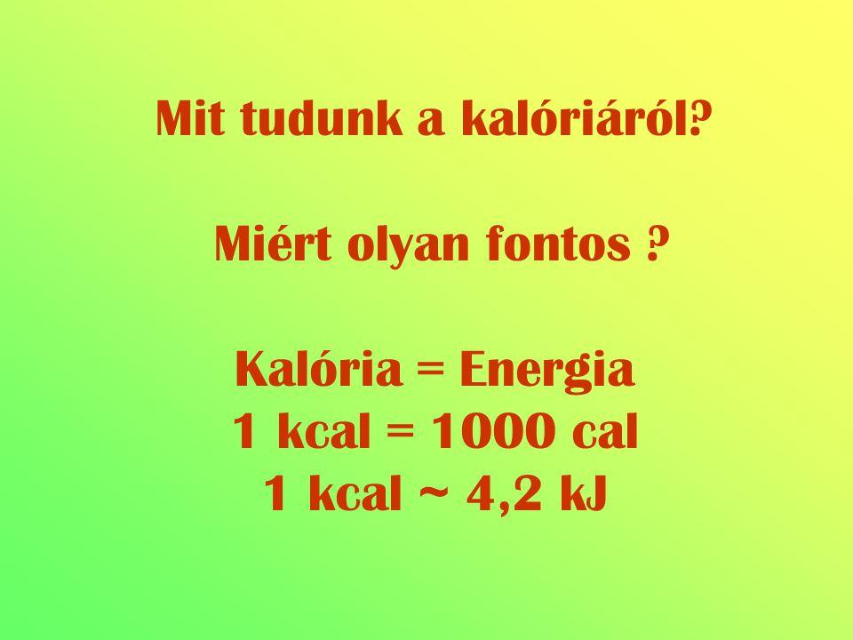 Mit tudunk a kalóriáról? Miért olyan fontos ? Kalória = Energia 1 kcal = 1000 cal 1 kcal ~ 4,2 kJ