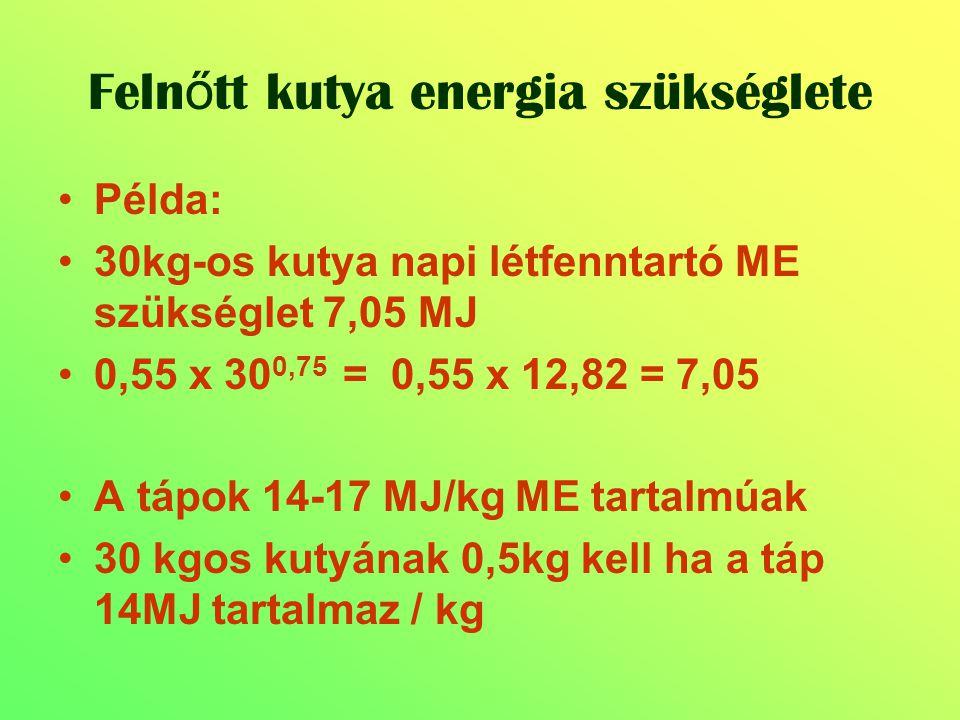 Példa: 30kg-os kutya napi létfenntartó ME szükséglet 7,05 MJ 0,55 x 30 0,75 = 0,55 x 12,82 = 7,05 A tápok 14-17 MJ/kg ME tartalmúak 30 kgos kutyának 0