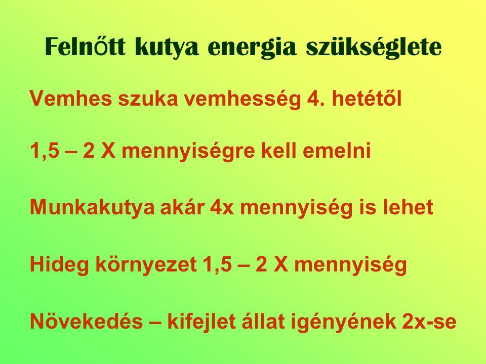 Vemhes szuka vemhesség 4. hetétől 1,5 – 2 X mennyiségre kell emelni Munkakutya akár 4x mennyiség is lehet Hideg környezet 1,5 – 2 X mennyiség Növekedé