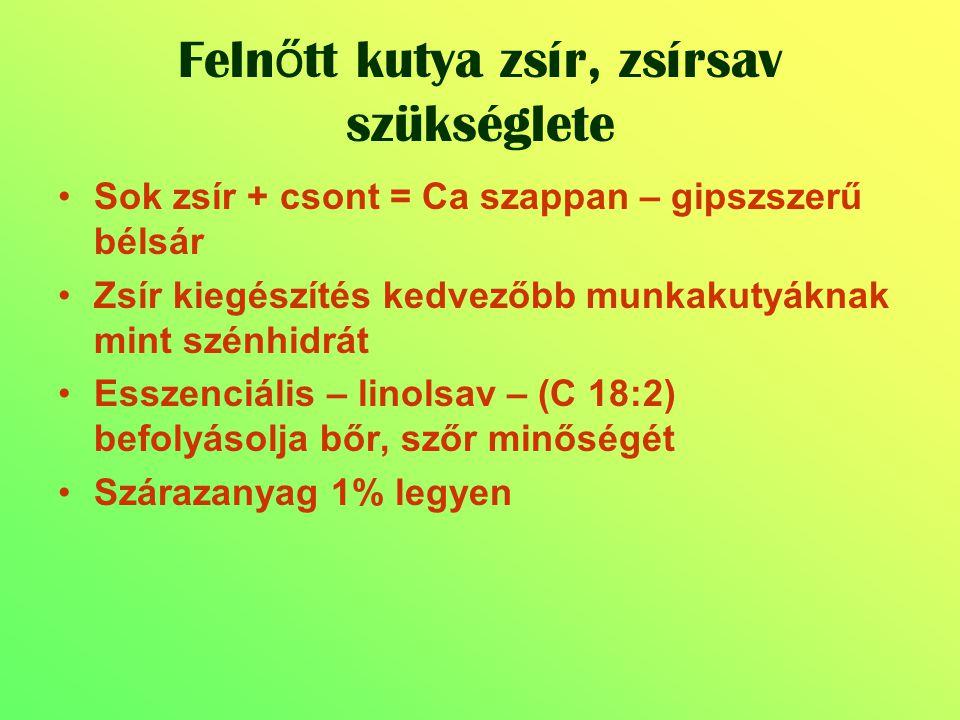 Sok zsír + csont = Ca szappan – gipszszerű bélsár Zsír kiegészítés kedvezőbb munkakutyáknak mint szénhidrát Esszenciális – linolsav – (C 18:2) befolyá