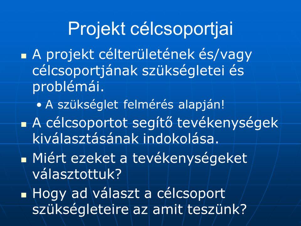 Projekt célcsoportjai A projekt célterületének és/vagy célcsoportjának szükségletei és problémái. A szükséglet felmérés alapján! A célcsoportot segítő