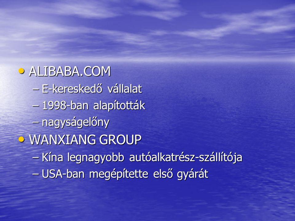 ALIBABA.COM ALIBABA.COM –E-kereskedő vállalat –1998-ban alapították –nagyságelőny WANXIANG GROUP WANXIANG GROUP –Kína legnagyobb autóalkatrész-szállítója –USA-ban megépítette első gyárát
