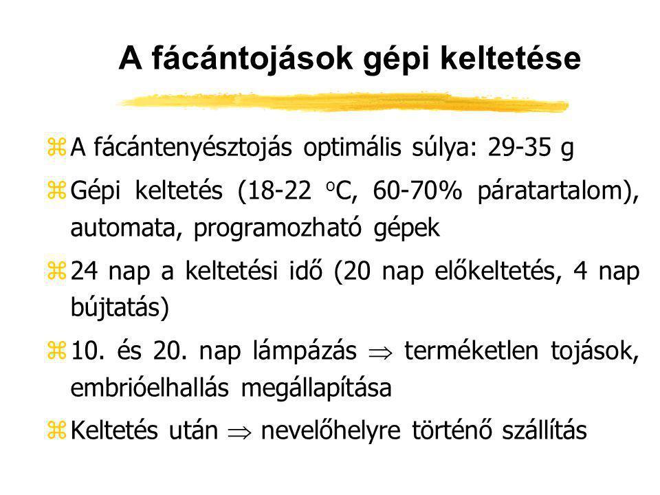 A fácántojások gépi keltetése zA fácántenyésztojás optimális súlya: 29-35 g zGépi keltetés (18-22 o C, 60-70% páratartalom), automata, programozható g