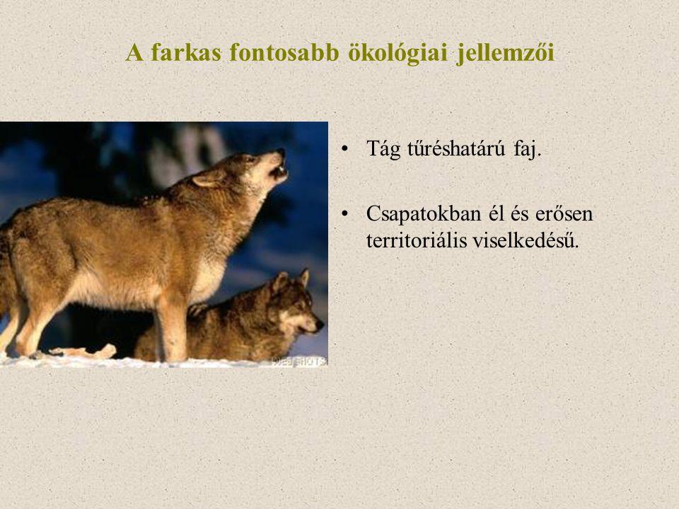 A farkas fontosabb ökológiai jellemzői Tág tűréshatárú faj. Csapatokban él és erősen territoriális viselkedésű.