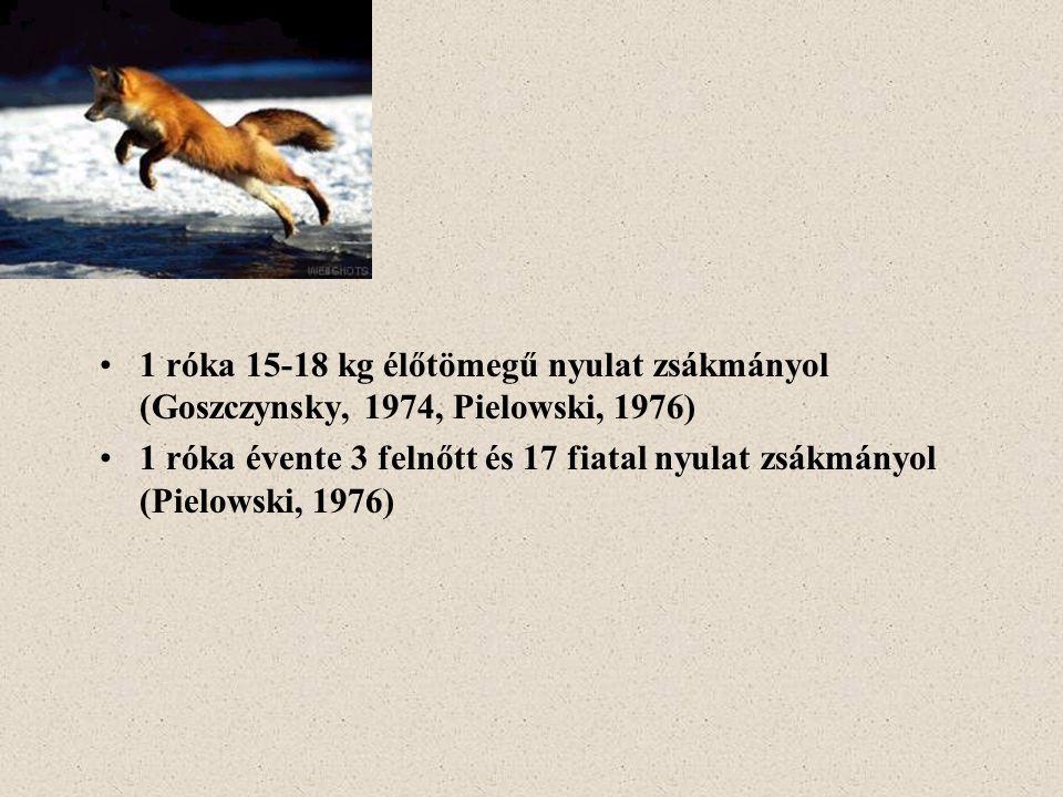 1 róka 15-18 kg élőtömegű nyulat zsákmányol (Goszczynsky, 1974, Pielowski, 1976) 1 róka évente 3 felnőtt és 17 fiatal nyulat zsákmányol (Pielowski, 19