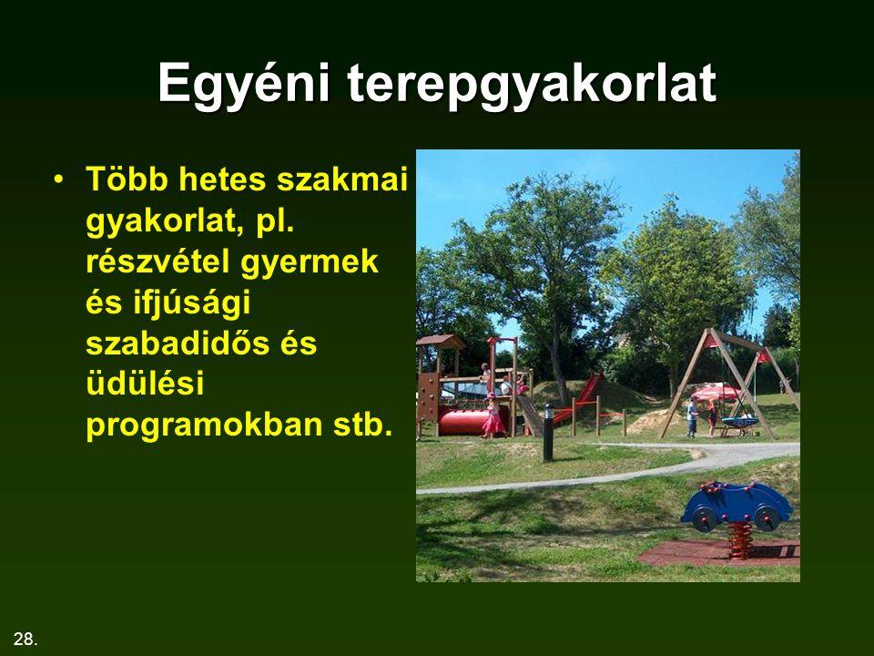 28. Egyéni terepgyakorlat Több hetes szakmai gyakorlat, pl. részvétel gyermek és ifjúsági szabadidős és üdülési programokban stb.