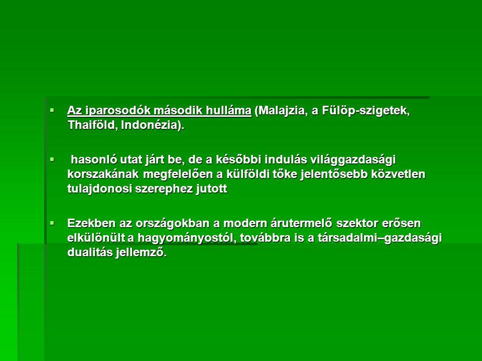  Az iparosodók második hulláma (Malajzia, a Fülöp-szigetek, Thaiföld, Indonézia).