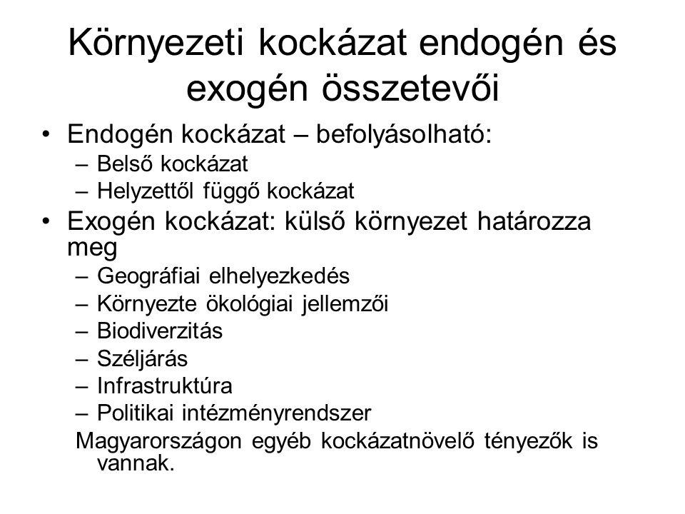 Környezeti kockázat endogén és exogén összetevői Endogén kockázat – befolyásolható: –Belső kockázat –Helyzettől függő kockázat Exogén kockázat: külső
