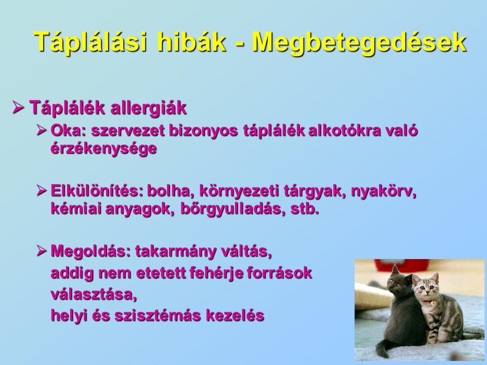  Táplálék allergiák  Oka: szervezet bizonyos táplálék alkotókra való érzékenysége  Elkülönítés: bolha, környezeti tárgyak, nyakörv, kémiai anyagok,