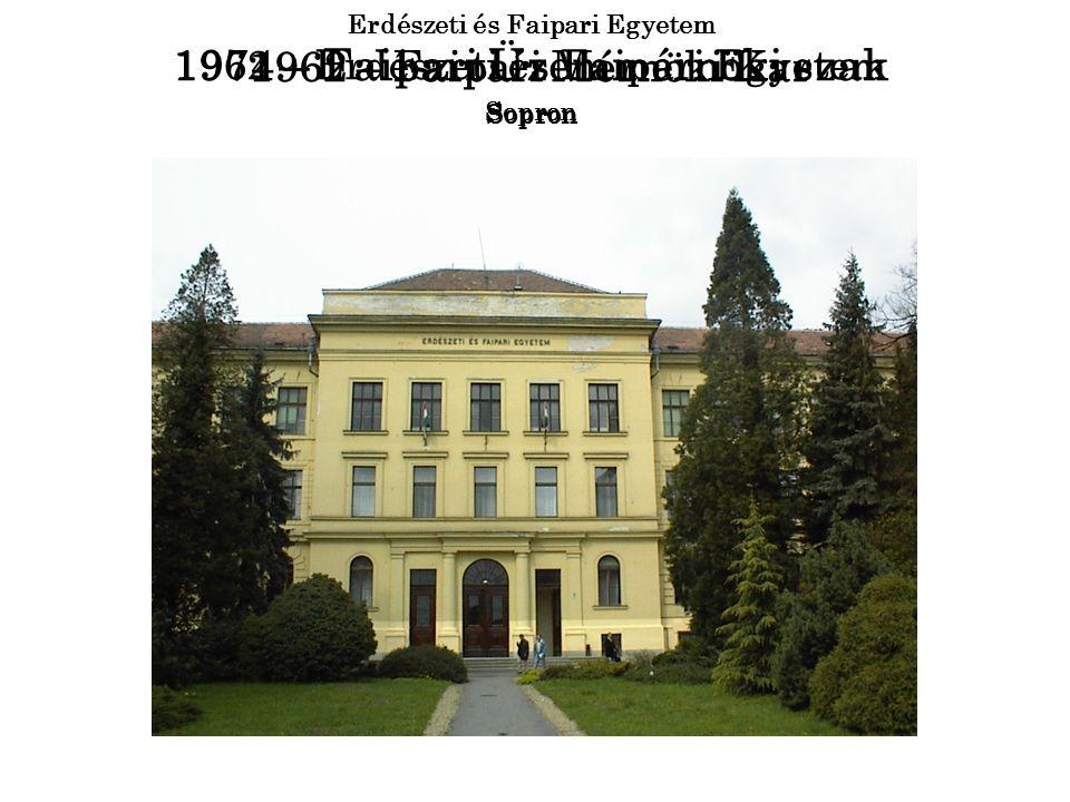 1986 – Papíripari képzés Sopron 1994 – Művészeti képzés Sopron 1998 – Soproni Egyetem Sopron 2000 – Nyugat-Magyarországi Egyetem Sopron 2002 – Informatikai képzés Sopron 2006 – Ip.