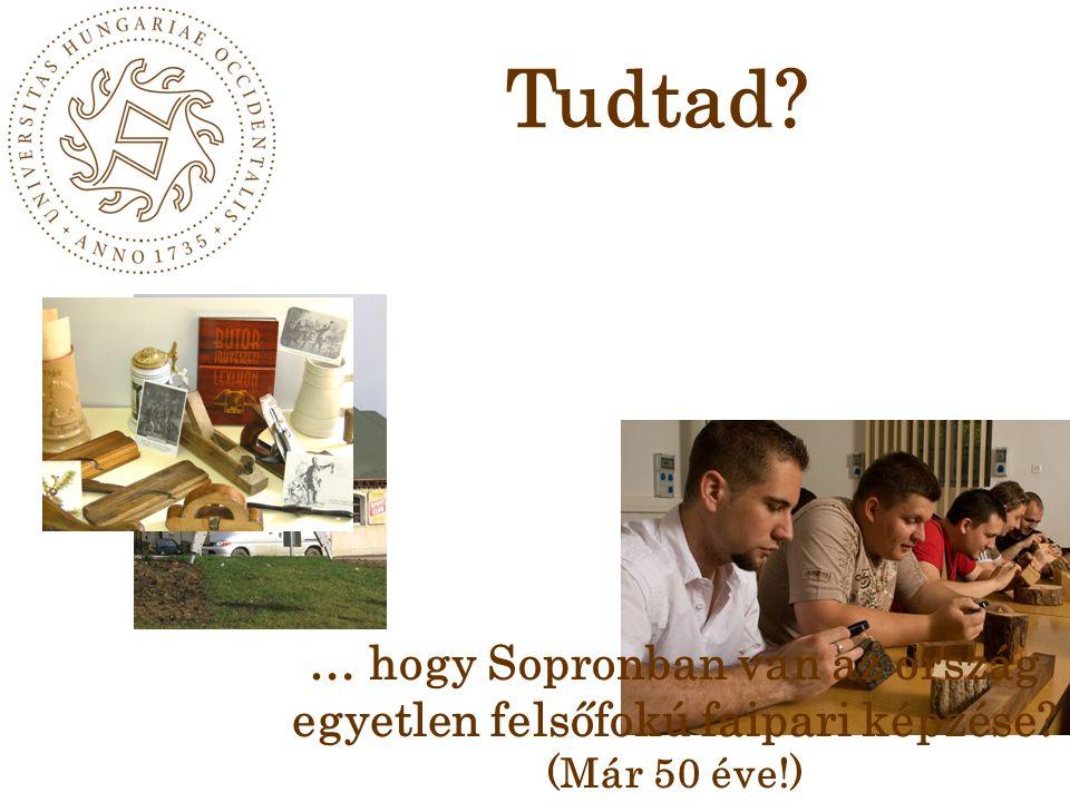 … hogy Sopronban van az ország egyetlen felsőfokú faipari képzése? (Már 50 éve!) Tudtad?