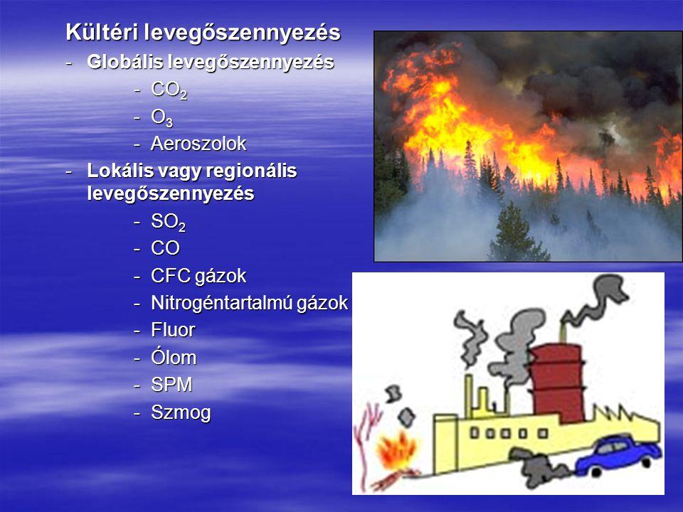 Kültéri levegőszennyezés -Globális levegőszennyezés -CO 2 -O 3 -Aeroszolok -Lokális vagy regionális levegőszennyezés -SO 2 -CO -CFC gázok -Nitrogéntartalmú gázok -Fluor -Ólom -SPM -Szmog