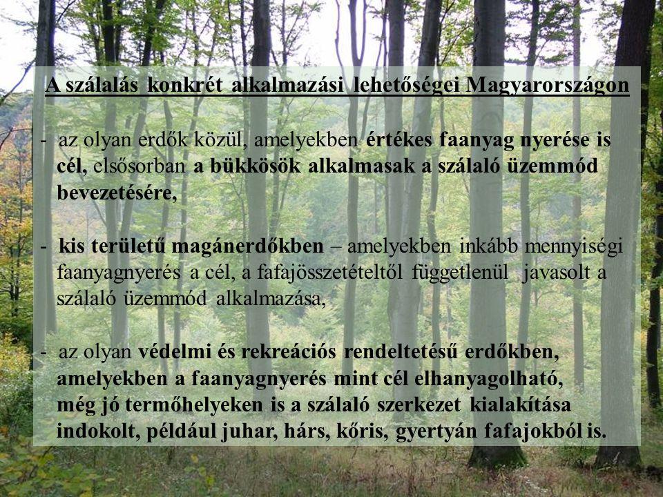 A szálalás konkrét alkalmazási lehetőségei Magyarországon - az olyan erdők közül, amelyekben értékes faanyag nyerése is cél, elsősorban a bükkösök alk