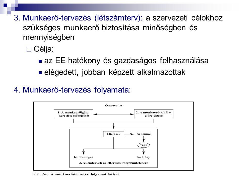 3. Munkaerő-tervezés (létszámterv): a szervezeti célokhoz szükséges munkaerő biztosítása minőségben és mennyiségben  Célja: az EE hatékony és gazdasá