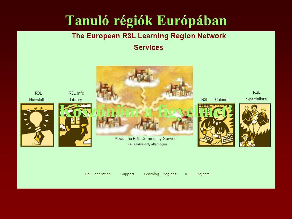 Tanuló régiók Európában Köszönöm a figyelmet!