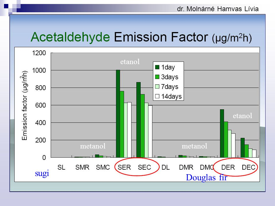 dr. Molnárné Hamvas Lívia sugi Douglas fir metanol etanol