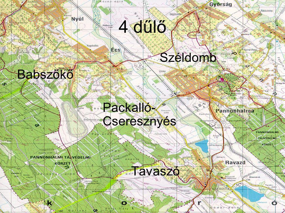 4 dűlő Széldomb Babszökő Packalló- Cseresznyés Tavaszó