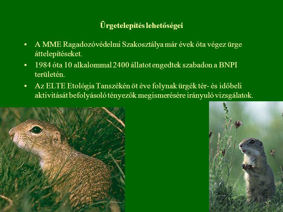 Ürgetelepítés lehetőségei A MME Ragadozóvédelmi Szakosztálya már évek óta végez ürge áttelepítéseket. 1984 óta 10 alkalommal 2400 állatot engedtek sza