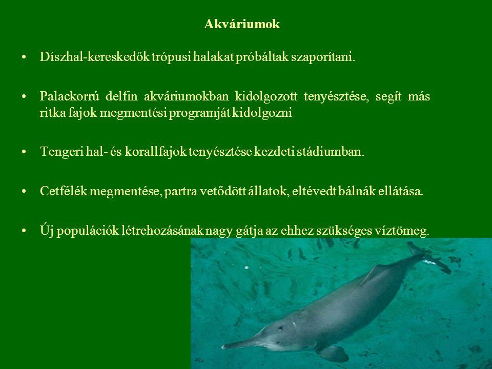 Akváriumok Díszhal-kereskedők trópusi halakat próbáltak szaporítani. Palackorrú delfin akváriumokban kidolgozott tenyésztése, segít más ritka fajok me