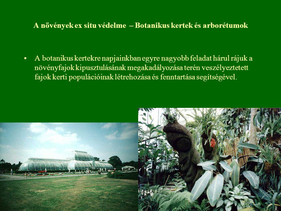 A növények ex situ védelme – Botanikus kertek és arborétumok A botanikus kertekre napjainkban egyre nagyobb feladat hárul rájuk a növényfajok kipusztulásának megakadályozása terén veszélyeztetett fajok kerti populációinak létrehozása és fenntartása segítségével.