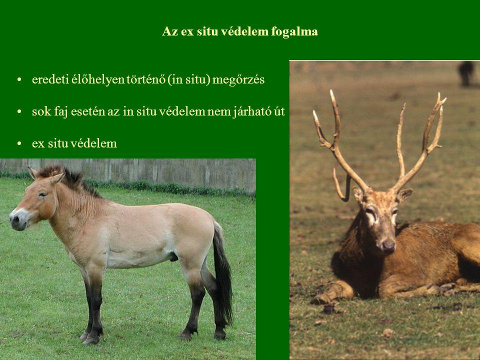 Az ex situ védelem fogalma eredeti élőhelyen történő (in situ) megőrzés sok faj esetén az in situ védelem nem járható út ex situ védelem