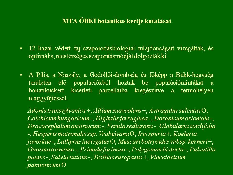 MTA ÖBKI botanikus kertje kutatásai 12 hazai védett faj szaporodásbiológiai tulajdonságait vizsgálták, és optimális, mesterséges szaporításmódját dolgozták ki.