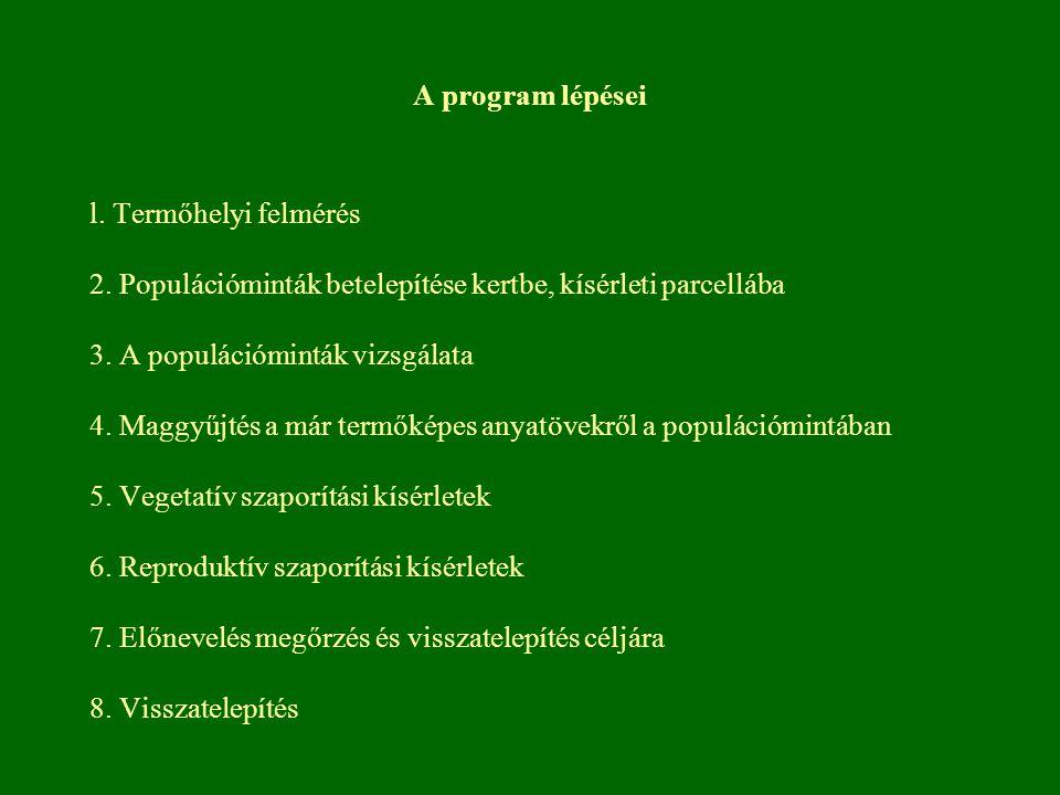 A program lépései l. Termőhelyi felmérés 2. Populációminták betelepítése kertbe, kísérleti parcellába 3. A populációminták vizsgálata 4. Maggyűjtés a