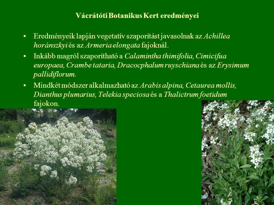 Vácrátóti Botanikus Kert eredményei Eredményeik lapján vegetatív szaporítást javasolnak az Achillea horánszkyi és az Armeria elongata fajoknál.