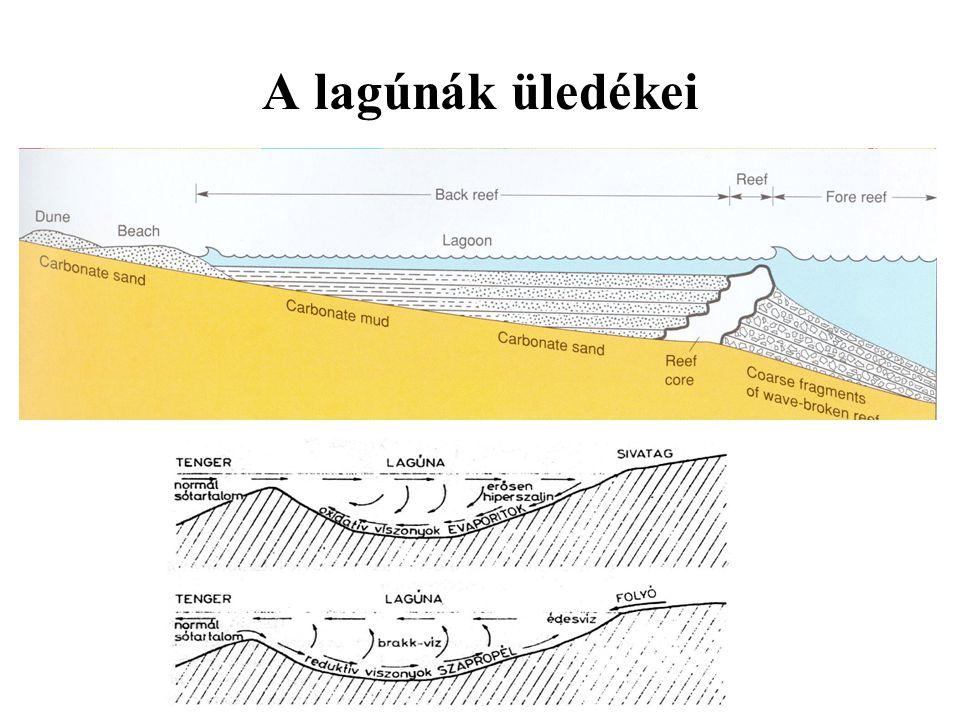 A lagúnák üledékei