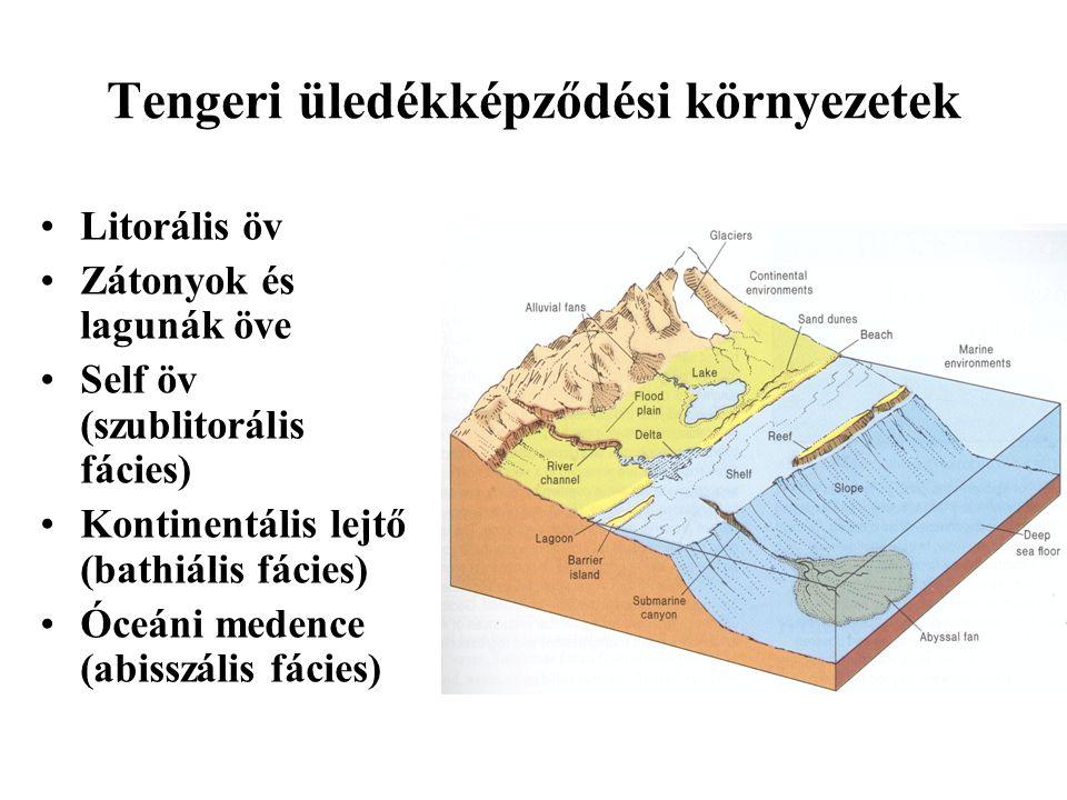 Tengeri üledékképződési környezetek Litorális öv Zátonyok és lagunák öve Self öv (szublitorális fácies) Kontinentális lejtő (bathiális fácies) Óceáni medence (abisszális fácies)
