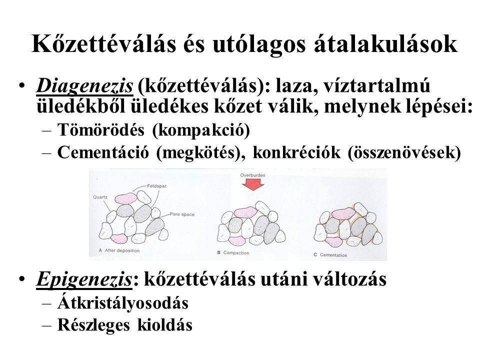 Kőzettéválás és utólagos átalakulások Diagenezis (kőzettéválás): laza, víztartalmú üledékből üledékes kőzet válik, melynek lépései: –Tömörödés (kompakció) –Cementáció (megkötés), konkréciók (összenövések) Epigenezis: kőzettéválás utáni változás –Átkristályosodás –Részleges kioldás