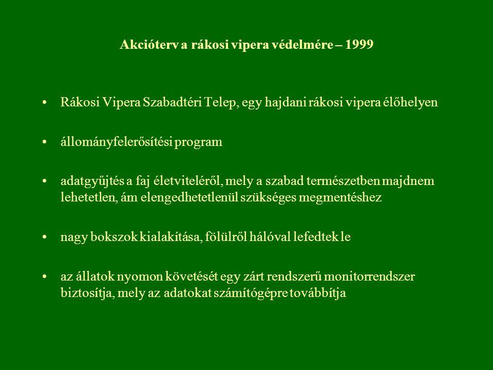 Akcióterv a rákosi vipera védelmére – 1999 Rákosi Vipera Szabadtéri Telep, egy hajdani rákosi vipera élőhelyen állományfelerősítési program adatgyűjté