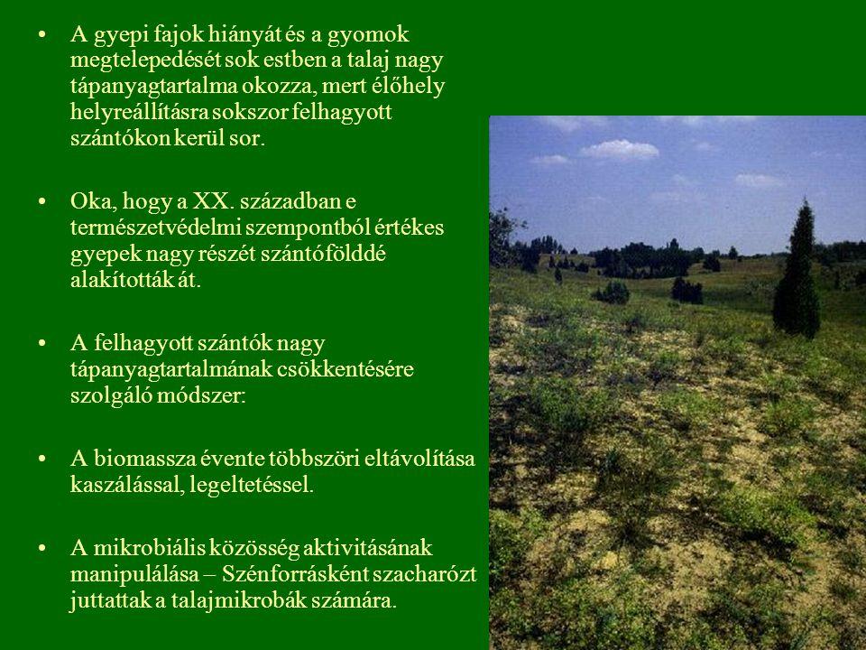 A gyepi fajok hiányát és a gyomok megtelepedését sok estben a talaj nagy tápanyagtartalma okozza, mert élőhely helyreállításra sokszor felhagyott szán