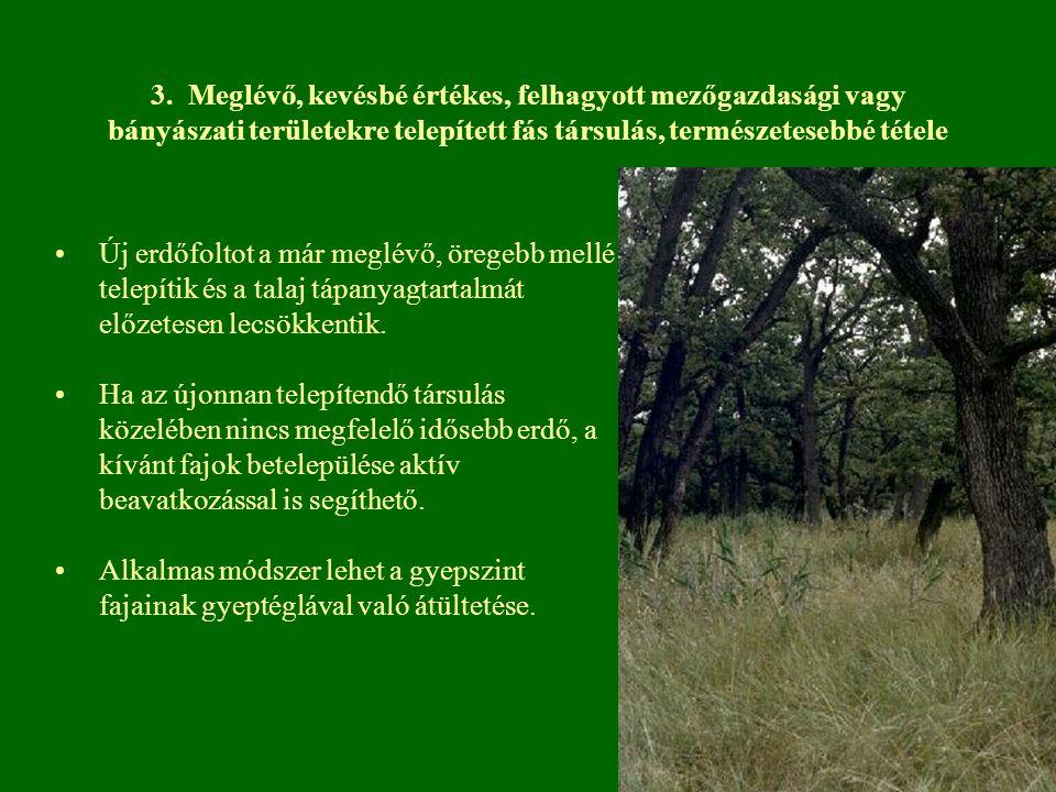 3. Meglévő, kevésbé értékes, felhagyott mezőgazdasági vagy bányászati területekre telepített fás társulás, természetesebbé tétele Új erdőfoltot a már