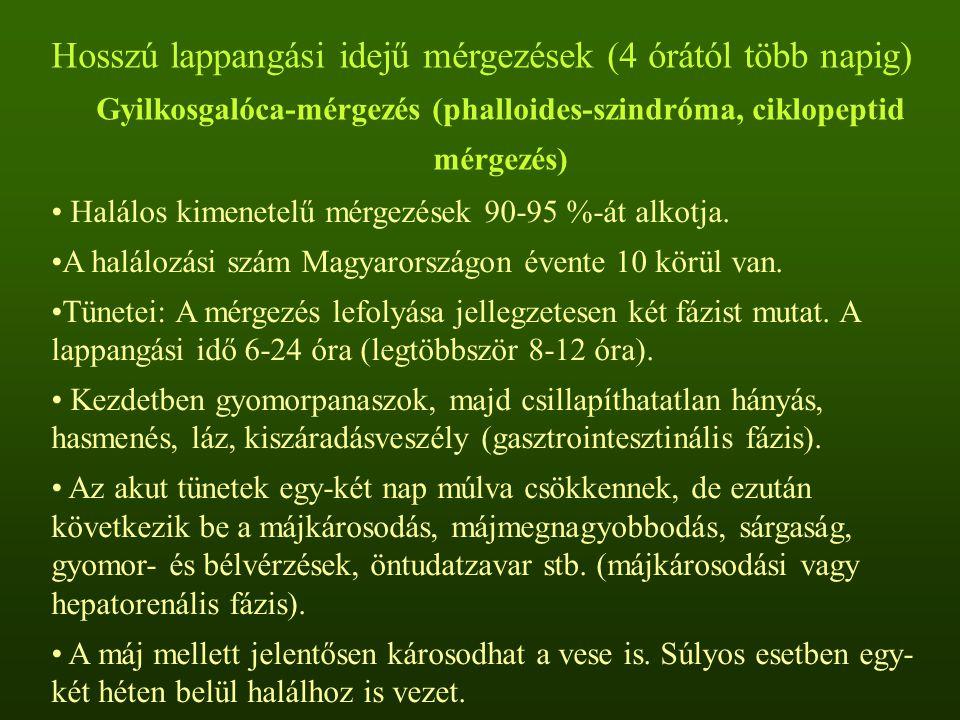 Hosszú lappangási idejű mérgezések (4 órától több napig) Gyilkosgalóca-mérgezés (phalloides-szindróma, ciklopeptid mérgezés) Halálos kimenetelű mérgez