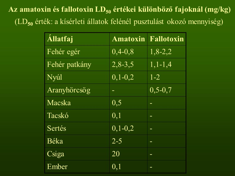 Az amatoxin és fallotoxin LD 50 értékei különböző fajoknál (mg/kg) (LD 50 érték: a kísérleti állatok felénél pusztulást okozó mennyiség) ÁllatfajAmato